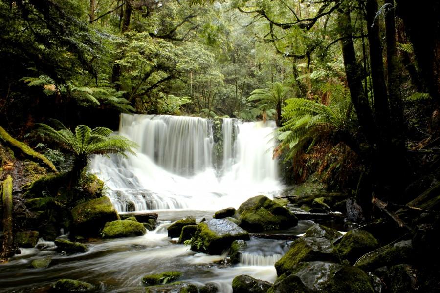West Coast Wilderness of Tasmania