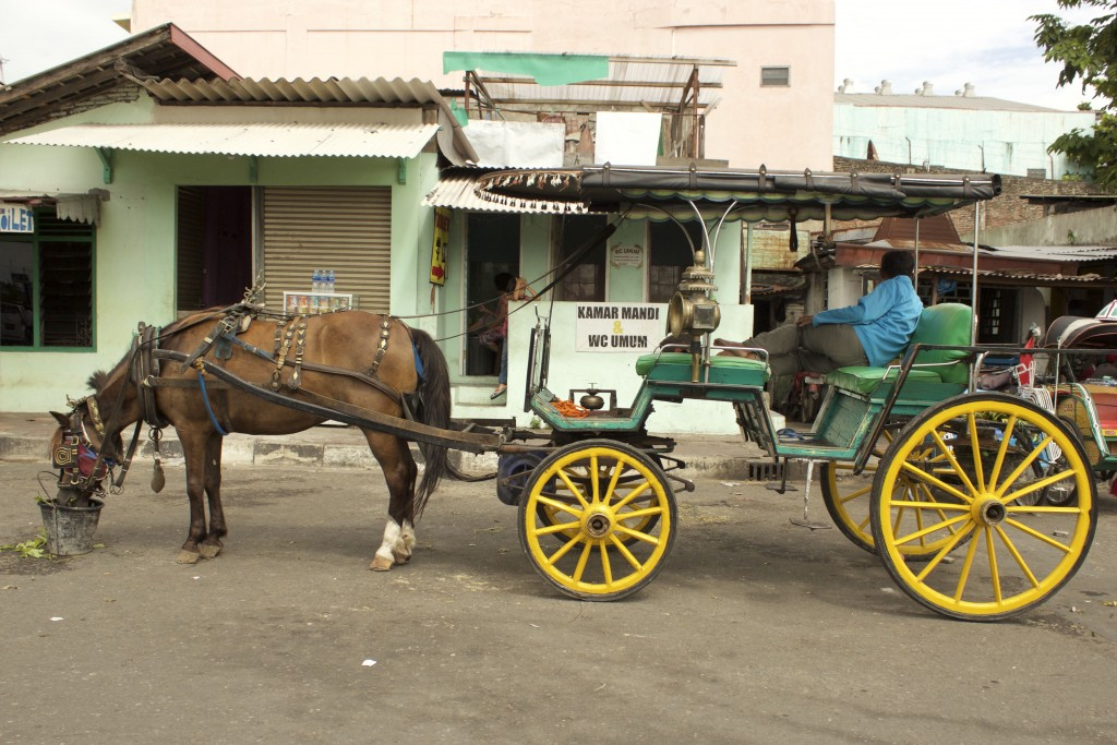 The horse drawn carriages known as Dokar, relaxing while waiting for the next fare, Yogyakarta