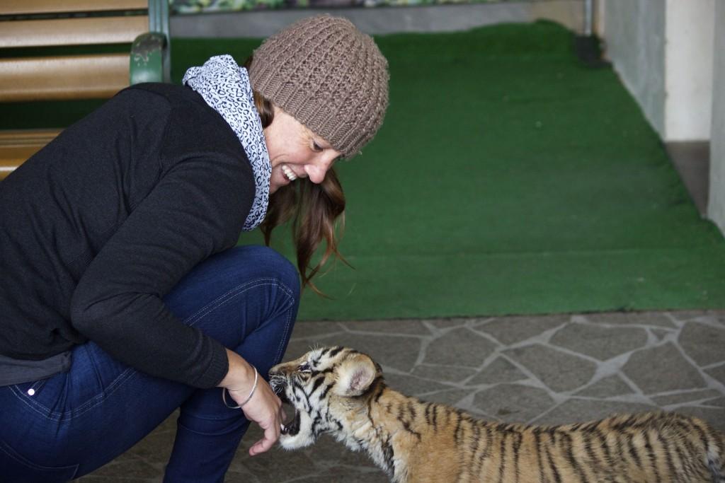 Shanghai Wild Animal Park - 19
